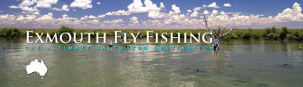 Exmouth Fly Fishing